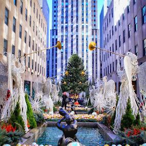 Christmas  by Aurelio Firmo - City,  Street & Park  Street Scenes ( rockefeller center new uork,  )
