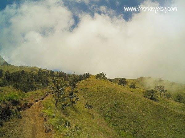 Pemandangan Bukit Hijau di Sepanjang Jalur Pendakian