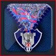 Universidad Chile zipper Background screen icon
