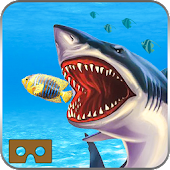 Killer Shark Attack VR