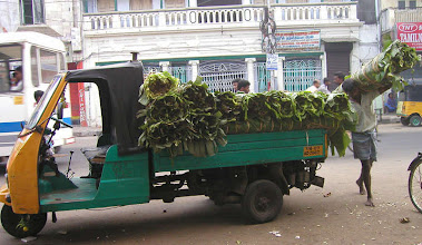 Photo: BANANA LEAF DELIVERY This truck drove around in the morning and delivered BANANA LEAFS in rolls which will be used as plates for the afternoon Thalis in restaurants. See the Thali on a banana leaf at http://picasaweb.google.com/LouWalterWilson/FOODINDIASRILANKAPersonalPhotosTaken19992008#5412137094891766402