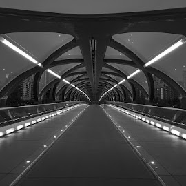 the loop by Gigi Kent - Black & White Buildings & Architecture