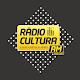 Download Rádio Cultura dos Palmares For PC Windows and Mac