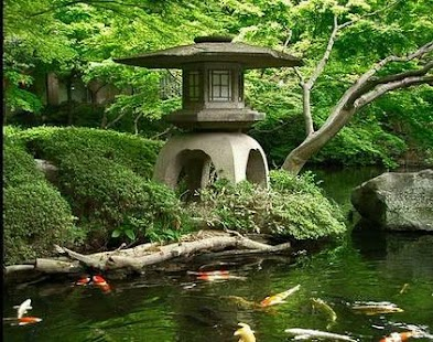 the role of garden in japanese culture Read a history of the development of japanese gardens from the chinese  of  great conflict and political turmoil, but art and culture were highly developed at  this time  space played the most important role (and was significant in  landscape.