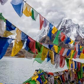 Prayer Flags @ Gurudongmar Lake by Mrigankamouli Bhattacharjee - Landscapes Mountains & Hills ( prayer, flags, gurudongmar, altitude, lake, india, sikkim )