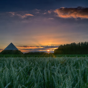 Sunset On The Field by Marco Bertamé - Landscapes Prairies, Meadows & Fields
