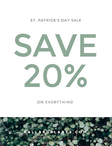 St. Patrick's Day Discount - St. Patrick's Day template