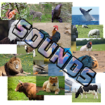 Guess The Animal - Sounds Icon