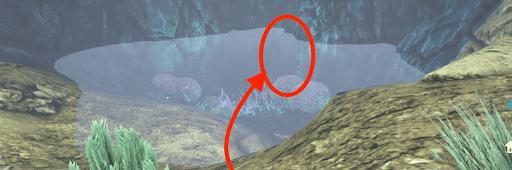 レーション 洞窟 アベ