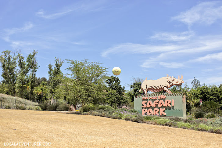 San Diego Zoo Safari Park (Top Things to Do in San Diego CA).