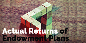 Actual Returns of Endowment Plans