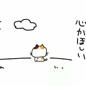 スイフト ZC53S のカスタム事例画像 nobu【T.L.関東with愛猫部No.30】さんの2020年01月27日21:12の投稿