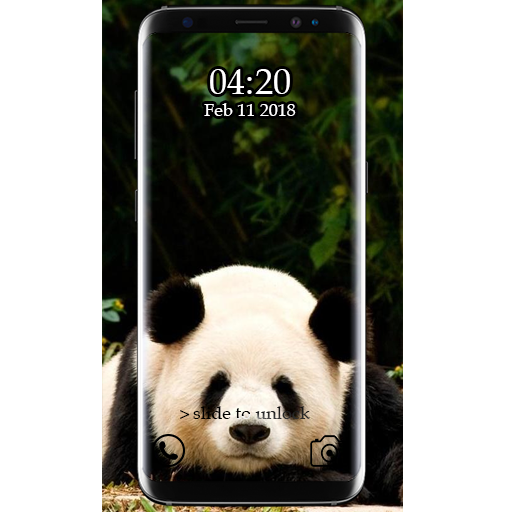 New Cute Panda Wallpaper HD