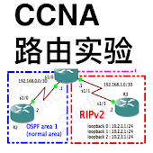 CCNA Labs Routing (Lite)