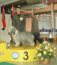 Photo: INT Show Nitra, SK 3rd place with ICh. Dea-Dro Kasiterit Mona Saturday, June 7, 2003