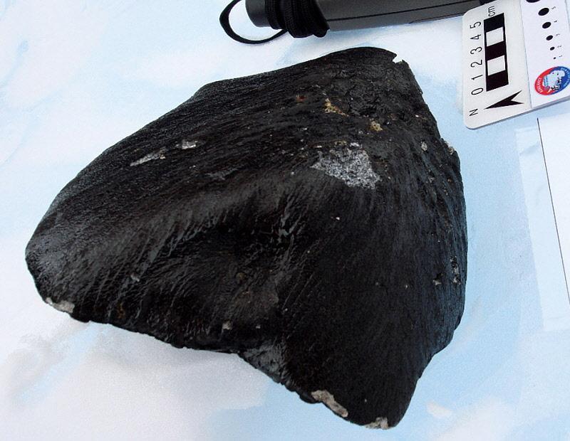 발견한 운석 사진