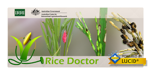 Rice Doctor - Apps on Google Play