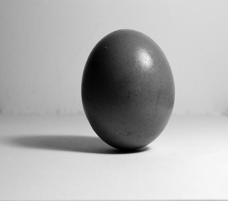 Prima l'uovo? di Alex72
