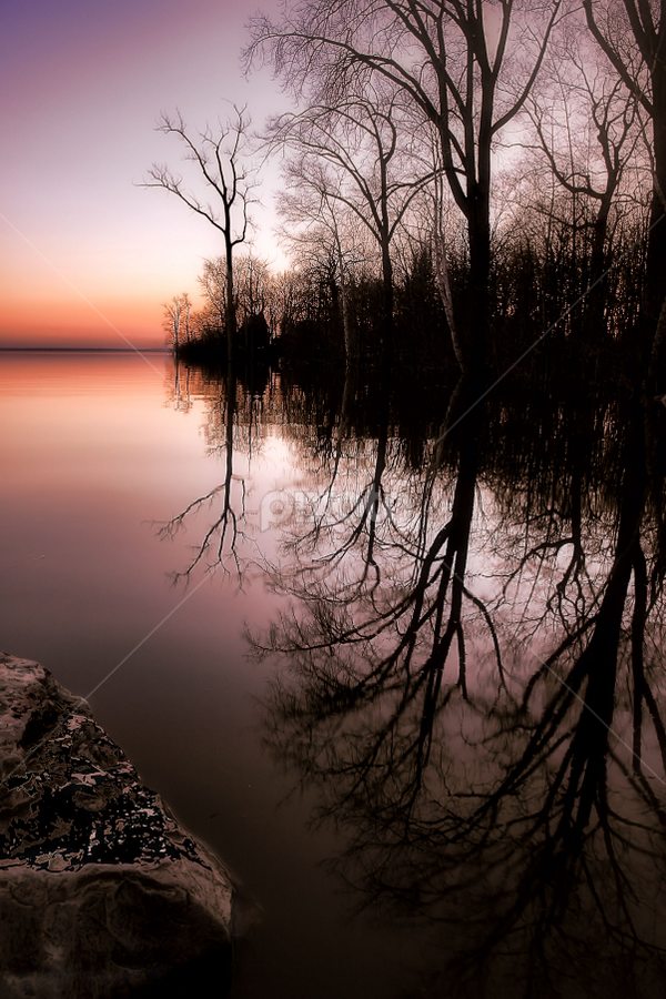 by Otto Mercik - Nature Up Close Trees & Bushes ( sunset, trees, reflexion, silhouette )