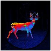 Deer Hunting – 2016 Sniper 3D