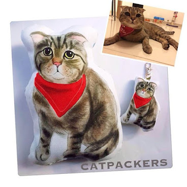 Custom made order 客人訂製寵物抱枕  紅巾是小貓的獨特造型 很可愛吧?  獨一無二寵物訂製,可製作抱枕,布袋,飾物等,不論製作多少件產品,設計費只收一次,  有意可wtsapp/line: 92733616