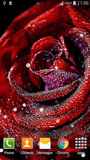 Download 3d Rose Live Wallpaper Free For Android 3d Rose Live Wallpaper Apk Download Steprimo Com