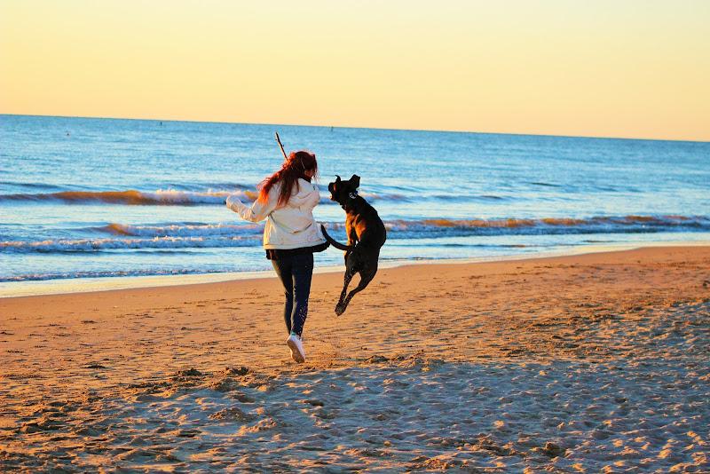 gioia al tramonto di lucky13