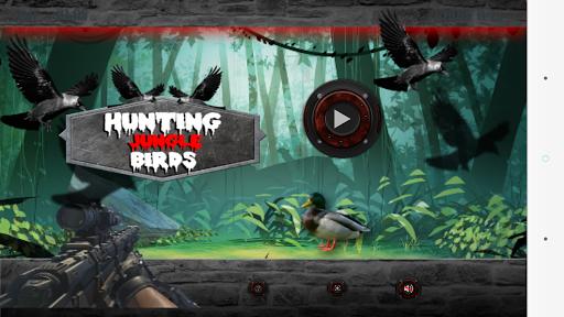 狩り ジャングル 鳥類