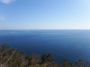 ホコラからの眺め2