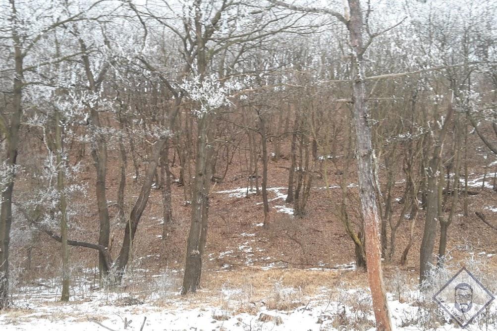 KÉP / A nyugati oldalon szinte semmi hó nincsen