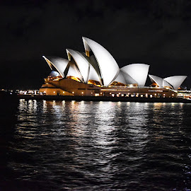 Opera House  by Nelida Dot - Buildings & Architecture Public & Historical ( reflection, night, artistic, building, architecture )