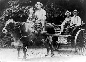 Photo: Hardy R. Rhoden 1878-1944 & Floyd Bennett 1910-1969 on annual trip to Little Rock, AR Fred Rhoden & son Wray on ox
