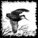 Giornale di caccia icon