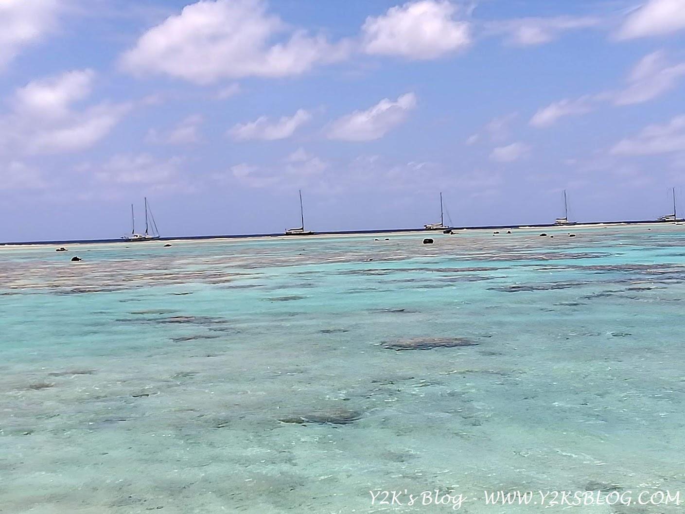 Le barche all'esterno del reef. Da SX: Little Fish, Cinnabar, Y2K, Smetana, Obiwan