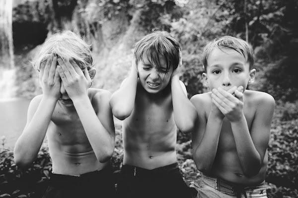 Le tre scimmie sagge di Laura Benvenuti