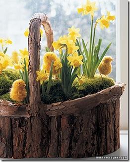 wood basket and daf.