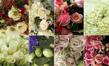 wedding flowers stmp