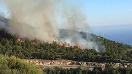 Incendio forestal en Enix.