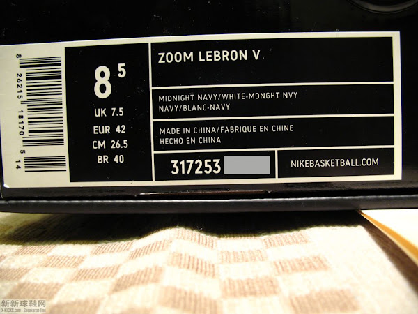 Zoom LeBron V Yankees Edition Possible to Release