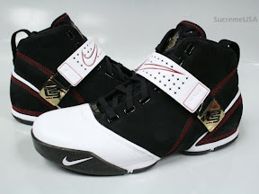 Black Nike Men Zoom Lebron V | University of Science and Arts of ...