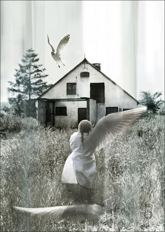 Dream Fotokonst