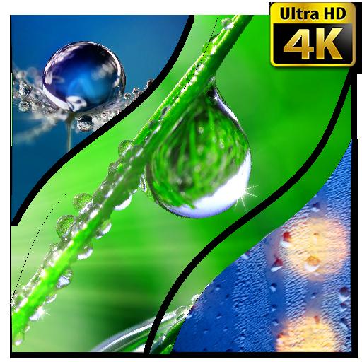 Drops of Water Wallpaper 4K