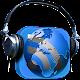 radio Download on Windows
