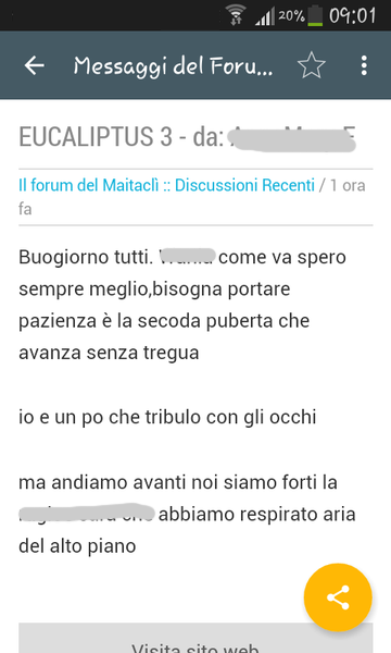 Maitaclì- screenshot
