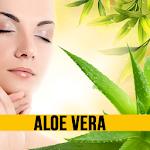 Benefits of Aloe Vera Icon