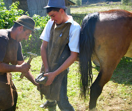 Photo: Moldova - Trabajos del campo