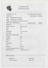 Photo: Verslag van aankeuring Hektor, tijdens nestendag april 2014