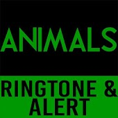 Animals-Maroon 5 Ringtone