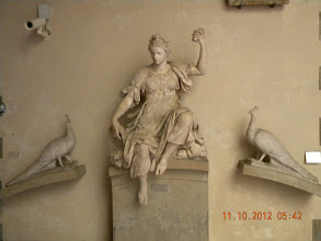 Photo: Juno and two peacocks (my favorite in the museum)
