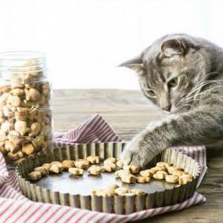 3 Ingredient Salmon Cat Treats.